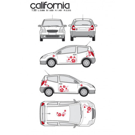 "Kit stickers car déco ""california"" rouge Taille S"