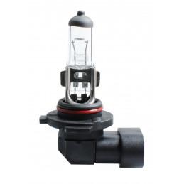 Ampoule halogène H12 53W PZ20D 12V