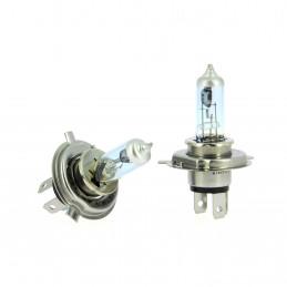 WRC 2 ampoules Platinium White +100%  H4 60/55W