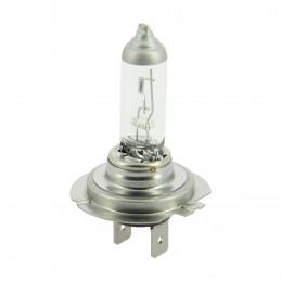 XLTECH 1 ampoule longue durée Long Life H7 12V 55W